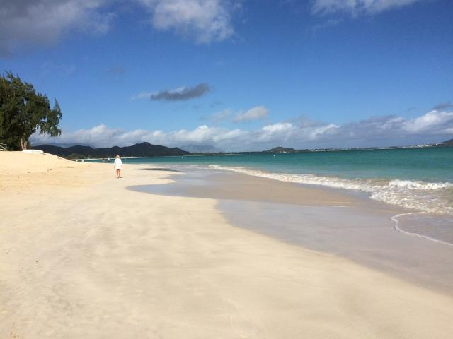 ハワイで浮気している妻の浮気調査